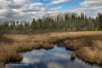 north-shore_fall-3303
