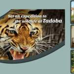 MTDC Moharli Tadoba India – Resort offers