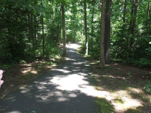 Down-The-Trail-Photo-1