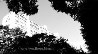 apartmentland1.3