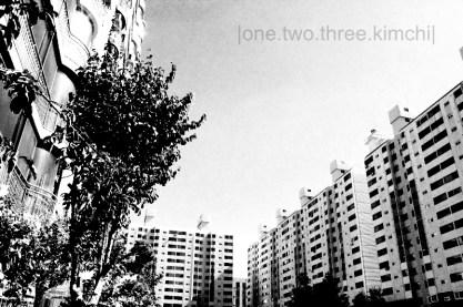 apartmentland5.3