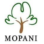 Mopan Copper Mines Plc