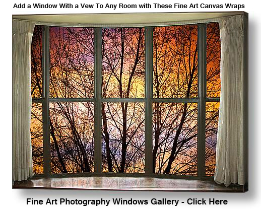 Add a Window With a Vew To Any Room with These Fine Art Canvas Wraps