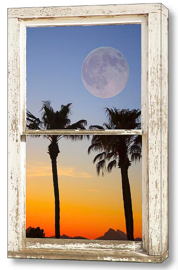 Full Moon Palm Tree Picture Window Sunset Dimensions of Interior Decorations Redefined with Fine Art Windows