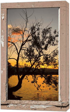 Tree Silhouette Lake Sunset Window View Dimensions of Interior Decorations Redefined with Fine Art Windows