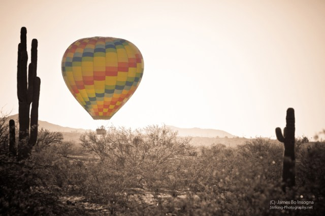 Hot Air Balloon Arizona Saguaro bw sc800s Professional Art Work Photography