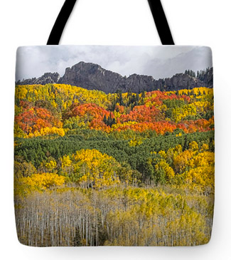 Colorado Kebler Pass Fall Foliage Tote Bag 18x18