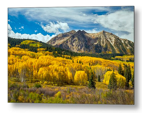 Colorado Rocky Mountain Fall Foliage Metal Print