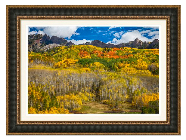 Colorful Colorado Kebler Pass Fall Foliage Framed Print