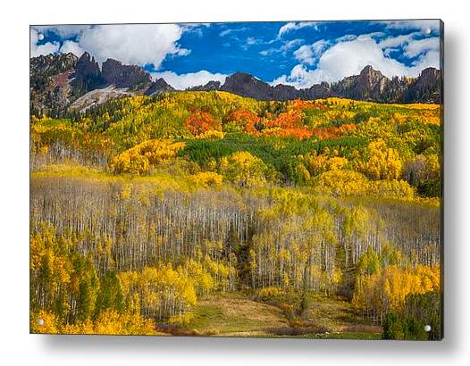 Colorful Colorado Kebler Pass Fall Foliage Acrylic Print