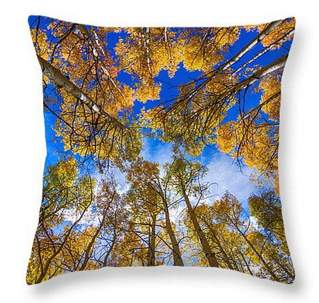 Colorful Aspen Forest Canopy Throw Pillow 18 x 18