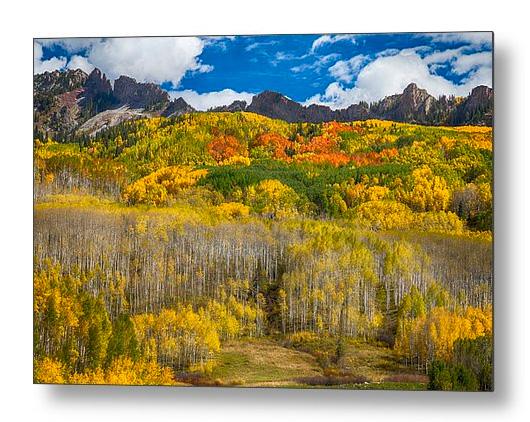 Colorful Colorado Kebler Pass Fall Foliage Metal Print
