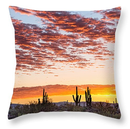 "Colorful Sonoran Desert Sunrise Throw Pillow 18"" x 18"""