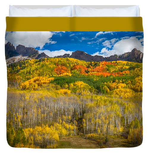 Colorful Colorado Kebler Pass Fall Foliage Queen Duvet Cover
