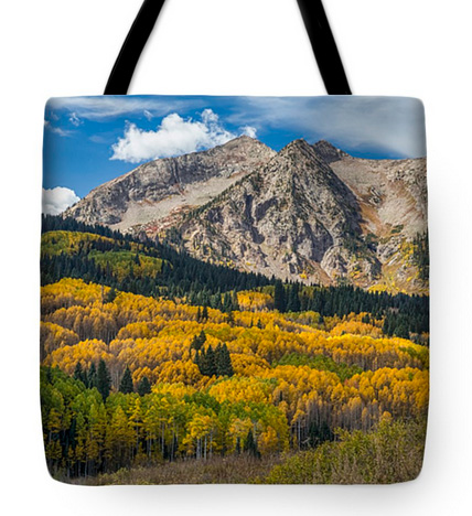 Rocky Mountain Autumn Season Colors Tote Bag