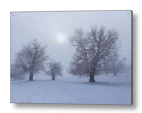Snowy Foggy Sun Burning Acrylic Print