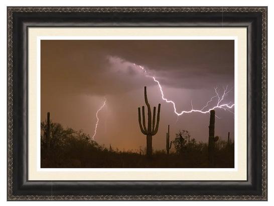 Sonoran Saguaro Southwest Desert Lightning Strike Ready To Hang