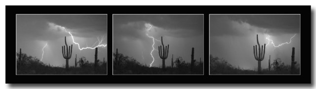 Southwest Saguaro Cactus Desert Storm Panorama BW Art