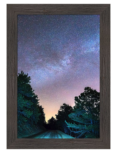 Forest Night Light Custom Framed Prints