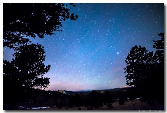 Starry Rocky Mountain Forest Night