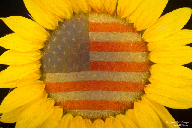 American Sunshine Digital Art Paintings for sale