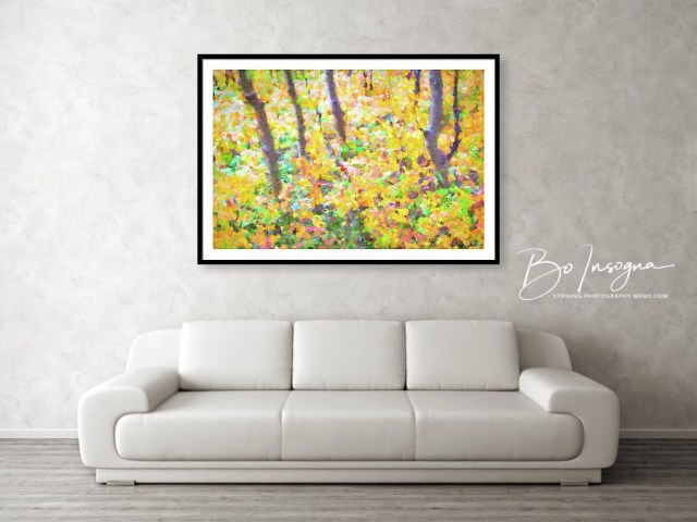 Colorful Forest Abstract Framed Print