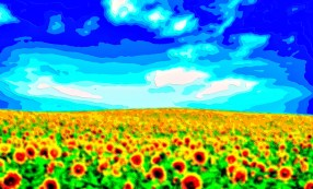 Flower Field Landscape Art