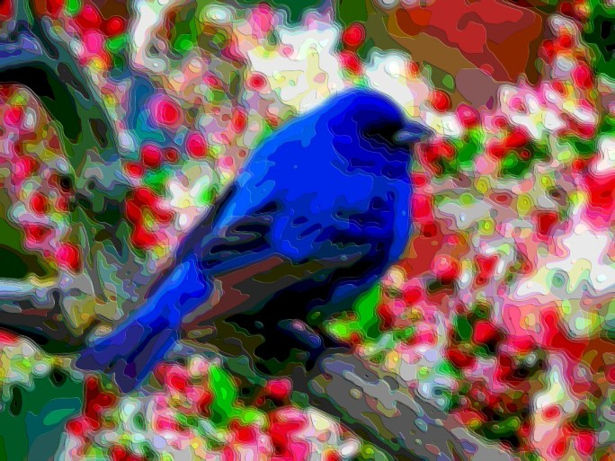 Bird Portrait Art Blue Jay