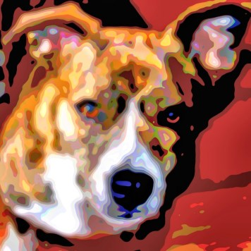 Animal Art Dogs