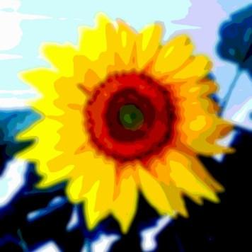 Flower Art Sunflower