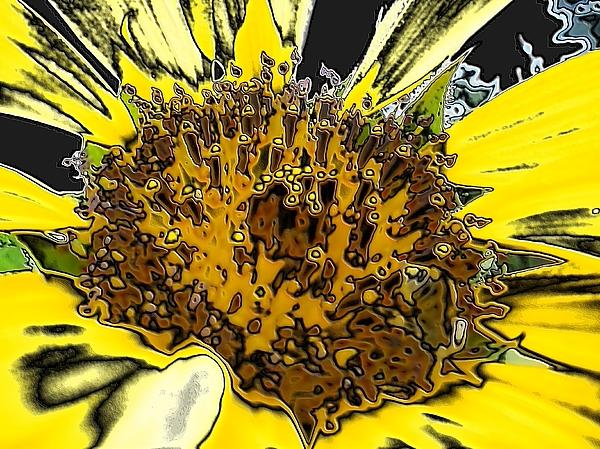 Artsy Sunflower Digital Art By Sonya Chalmers