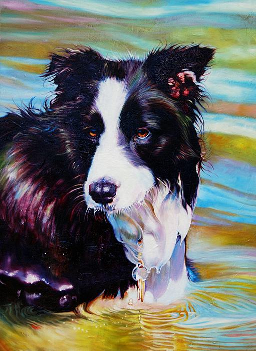 Buddy Border Collie Painting By Kelly McNeil