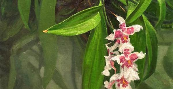 Beautiful Orchid Oil Paintings - Fine Art Blogger