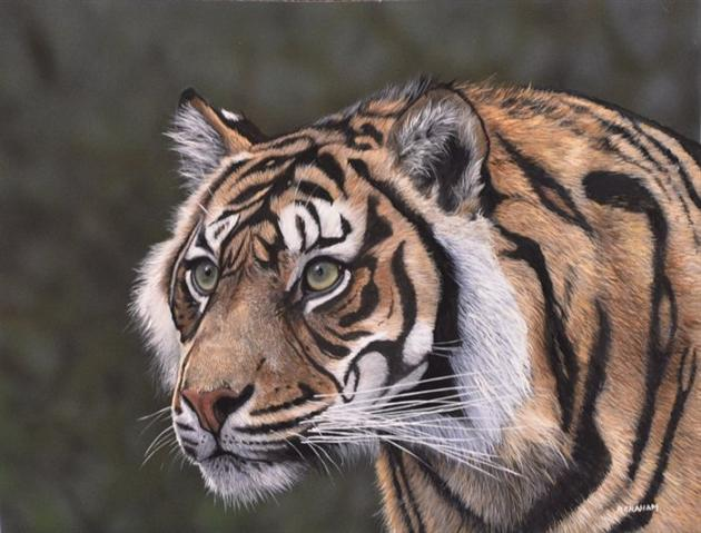 Realistic Tiger and Leopard Paintings