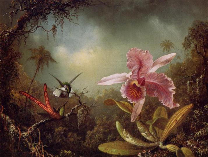 martin-johnson-heade-hummingbirds