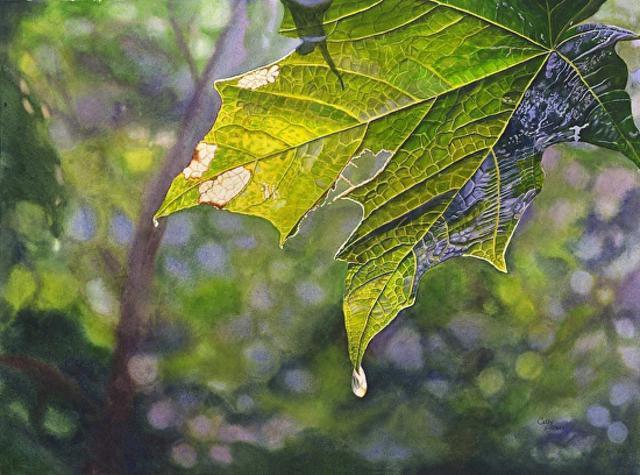 leaf-watercolor-paintings
