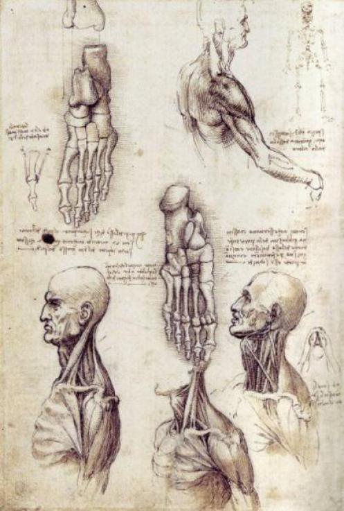 Leonardo-da-vinci-bio