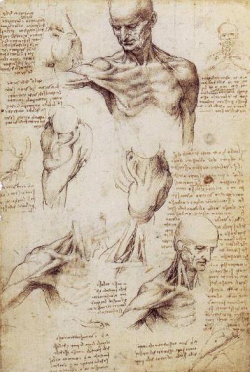 leonardo-da-vinci-wiki