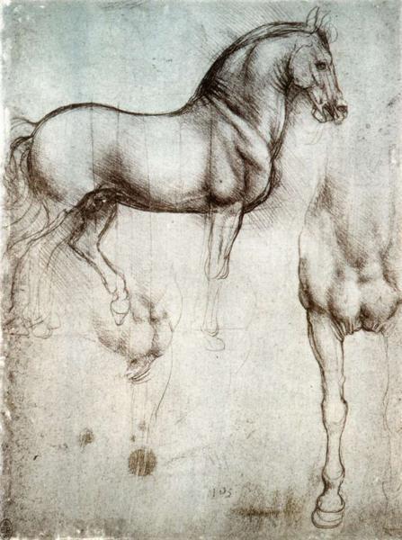 leonardo-horse-drawing