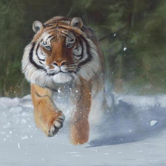 tiger-paintings