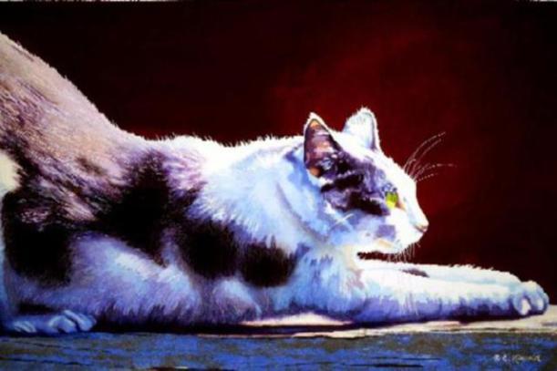 cat-watercolor-paintings