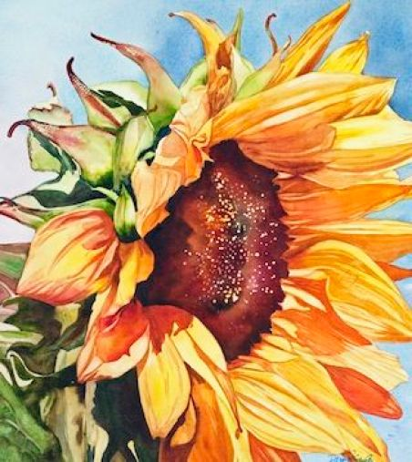 Exploring Dimensions of Forgiveness: The Sunflower