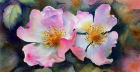 flower-paintings