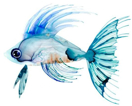 teal-fish-paintings