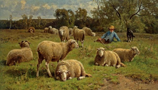 paintings-of-sheep
