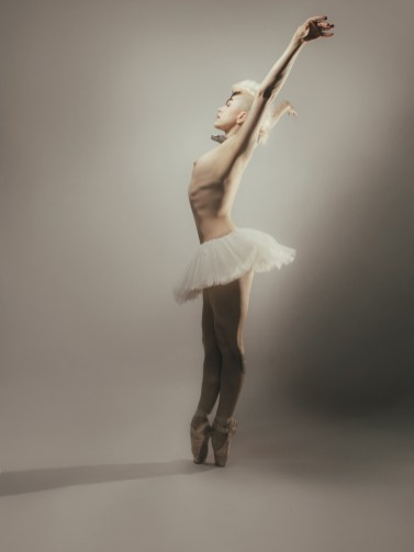 ballet dancer wall art