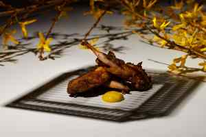 Gaggan Anand Interview on Fine dining indian - Quail