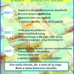 Cardio – Strength Combo Workout!