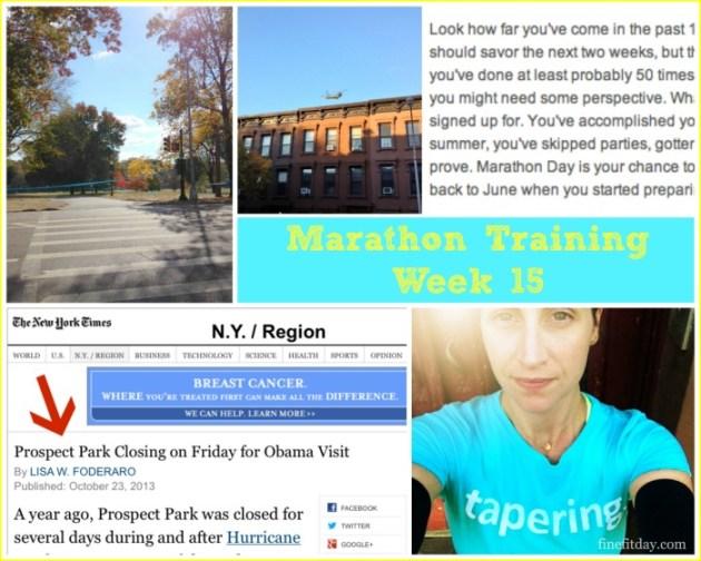 Marathon Training Update Week 15
