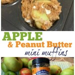 Apple PB Muffins and Chocolate Peanut Butter Smoothie – Recipes and Giveaway!